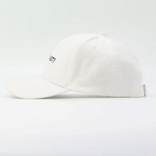 Letter WHY NOT Snapbacks Baseball Cap Hip Hop Hat For Men Women Dad Hat Gorras Boy Girls Cotton Black White Fitted Hat Bone Caps 8